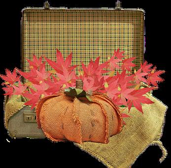 Pumpkin, Autumn, Seasonal, Suitcase, Leaves, Fall