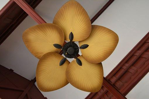 Fan, Ceiling Fan, Air, Cool, Interior, Home, Ceiling