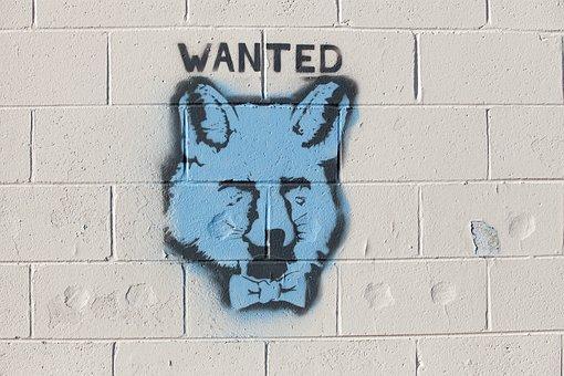 Graffiti, Fox, Wanted, Brick, Wall, Spraypaint, Spray