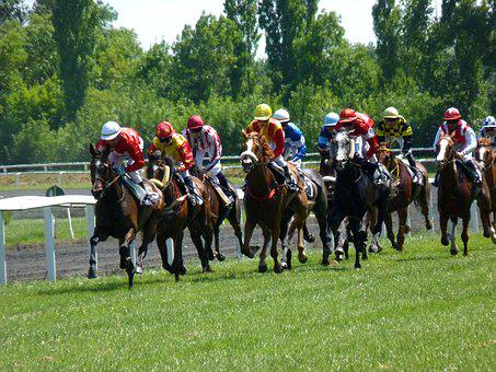 Race, Racing, Horse, Hippodrome