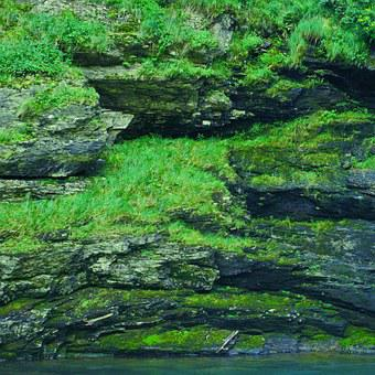 Green, Rock, Stone, Overgrown, Nature, Ticino, Verzasca
