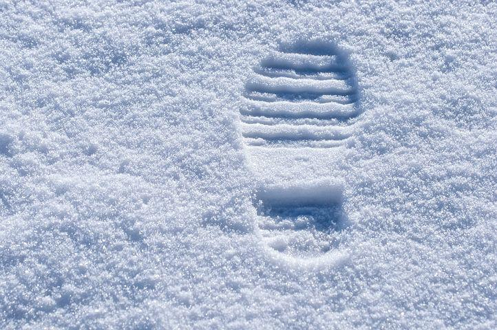 Trace, Snow Lane, Footprint, Reprint, Track In The Snow