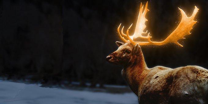 Deer, Antler, Animal, Mammal, Golden Horn, Graphics