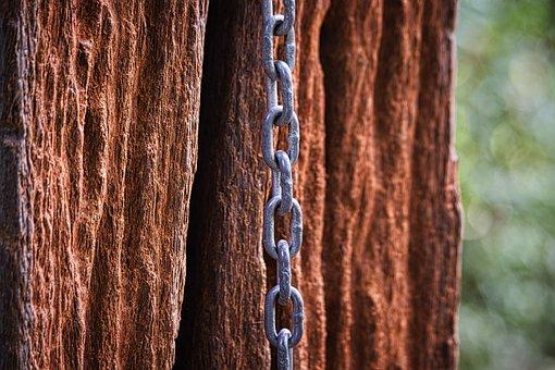 Chain, Wood, Hardwood, Iron Chain, Metal