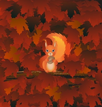 Squirrel, Rodent, Tree, Maple, Autumn, Fall