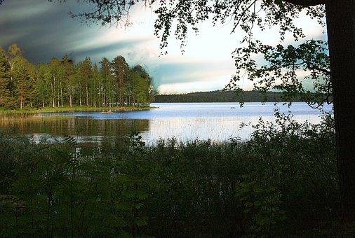 Trees, Forest, Lake, Water, Sunset, Dusk, Landscape
