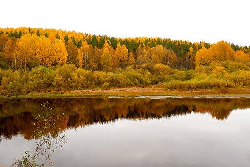 Lake, Autumn, Nature, Fall, Season, Outdoors, Forest