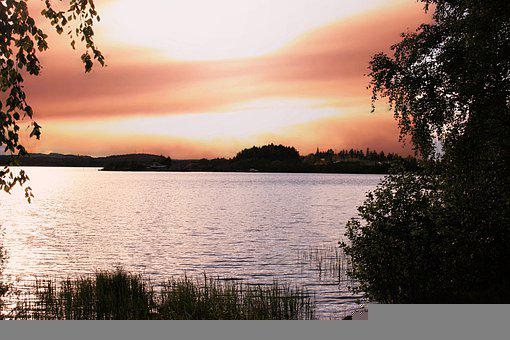 Lake, Nature, Sunset, Dusk, Trees, Clouds, Forest