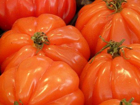 Cuore Di Bue, Ox Heart, Beefsteak Tomato, Tomato, Red