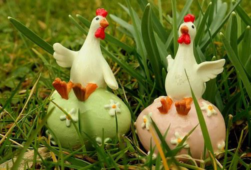 Chicken, Chickens, Funny, Meadow, Nature, Poultry, Hen
