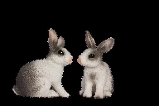 Easter Bunny, Spring, Frühlingsanfang, Spring Awakening