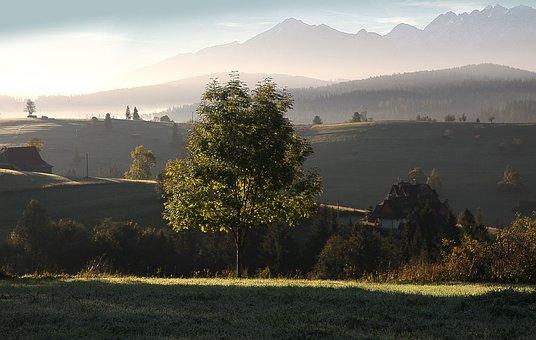 Tatry, Sunrise, Dawn, Polish Tatras, Morning, Tree