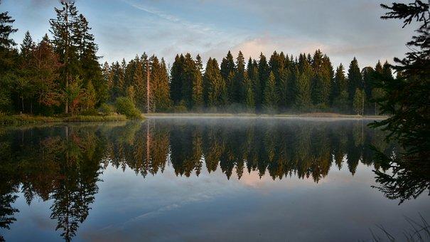 Lake, Forest, Nature, Sunrise, Fog, Mist, Water