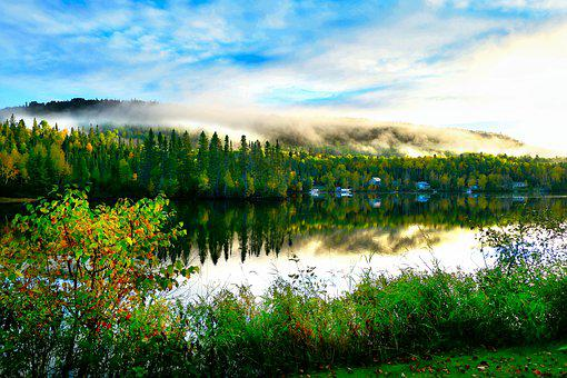 Lake, Foliage, Mist, Forest, Conifers, Fall, Mountain