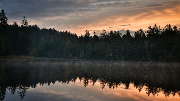 Nature, Lakes, Outdoors, Travel, Exploration, Trees