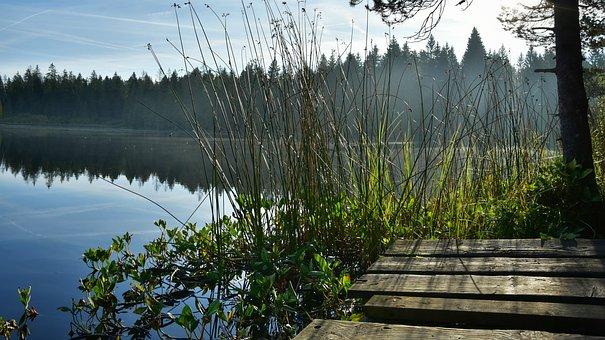 Nature, Lake, Dock, Outdoors, Travel, Exploration