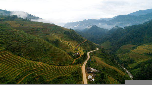Agriculture, Countryside, Terraces, Nature, Field, Farm