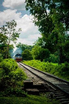 Railroad, Train, Forest, Travel, Transport, Rails