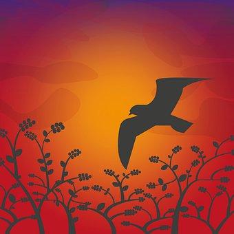 Bird, Silhouette, Berries, Trees, Wings, Sunset