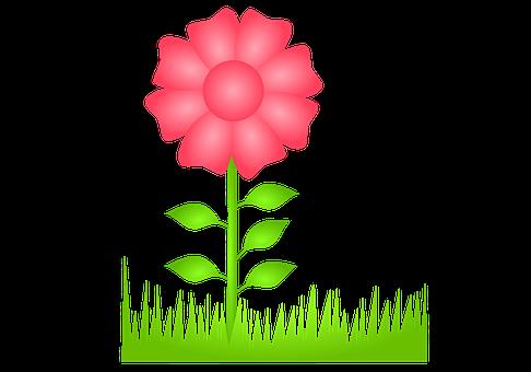 Flower, Flora, Spring, To Flourish, Drawing, Decor