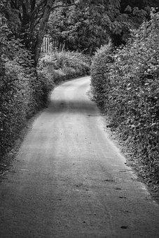 Road, Narrow, Hedge, Monochrome, Path, Landscape