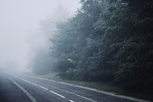 Fog, Nature, Road, Outdoors, Trees