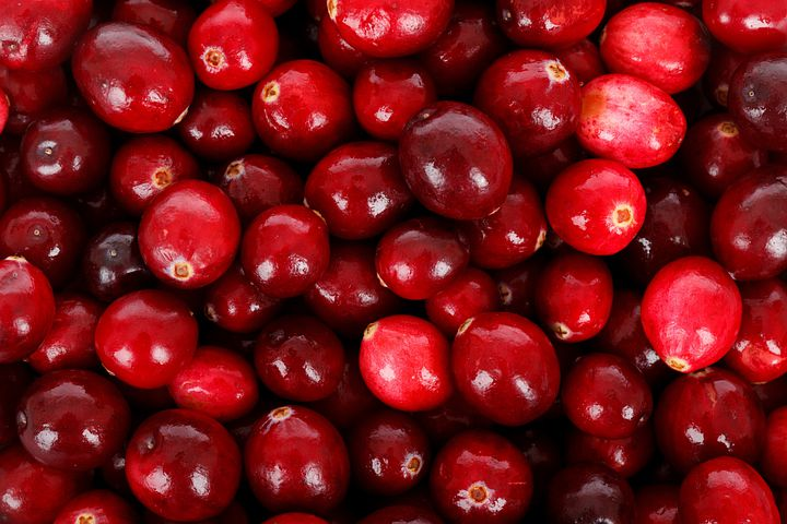 Backdrop, Background, Berry, Cranberry, Diet, Eating