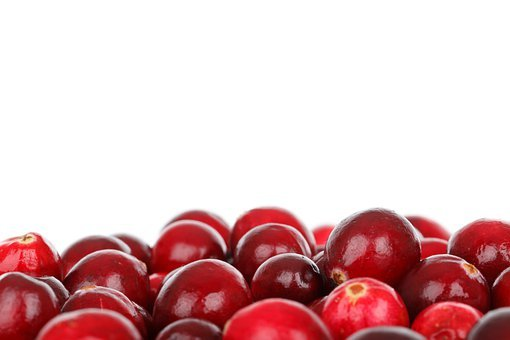 Berry, Cranberry, Diet, Eating, Food, Fresh, Fruit
