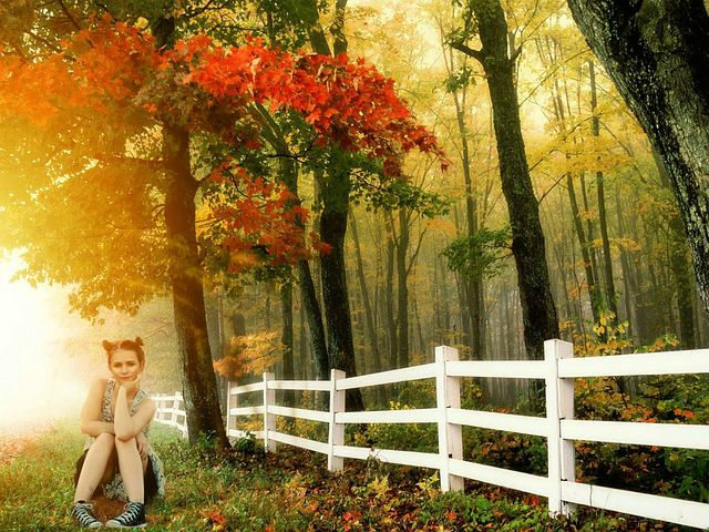 Girl, Sitting, Outdoors, Nature, Fence, Picket, Young