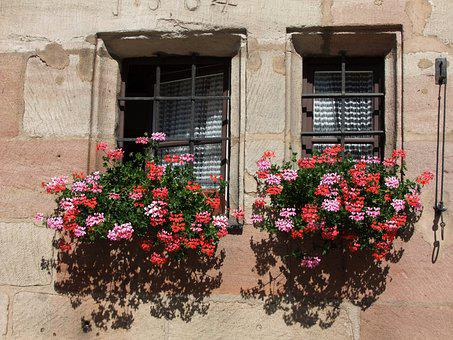 Flower Boxes, Window, Facade, Old Window, Architecture