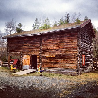 Shed, Shack, Cabin, Wooden, Norway, Nature, House, Home