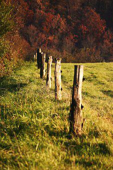 Slovakia, Nature, Autumn, Forest, Country, Pickets