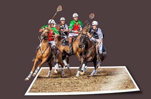 Image Editing, Sport, Equestrian, Ball Sports, Team