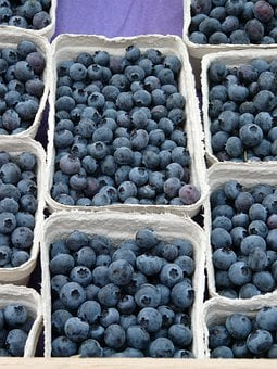 Blueberry, Vaccinium Myrtillus, Berries, Blue, Many