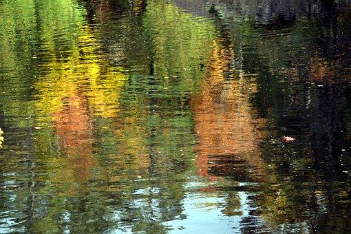 Lake, Autumn, Water, Travel, Exploration