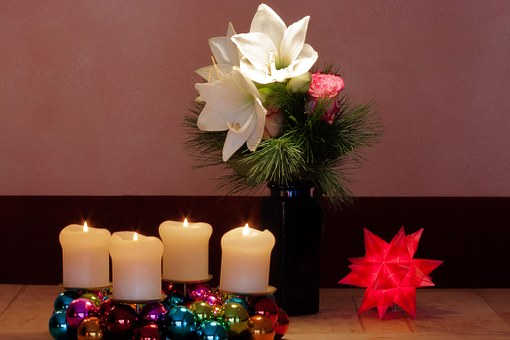 Advent Wreath, Christmas, Amaryllis, White, Flowers