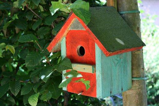Nesting Box, Aviary, Spring, Bird, Nest, Home, Breed