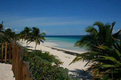 Yucatan, Mexico, Beach, Sea, Palm Trees, Sky, Holiday