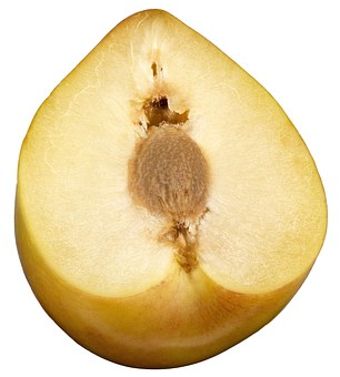Plum, Yellow Plum, Sliced Fruit, Sliced Plum