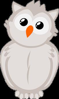 Owl, Bird, Animal, Bird Of Prey, Raptor, Wildlife