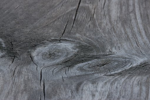 Wood, Road, Annual Rings, Cross Section, Grain
