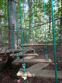 Climbing Forest, Climb, Climbing Garden, Drex, Forest