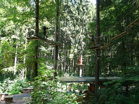 High Ropes Course, Climb, Drex, Forest Ropes
