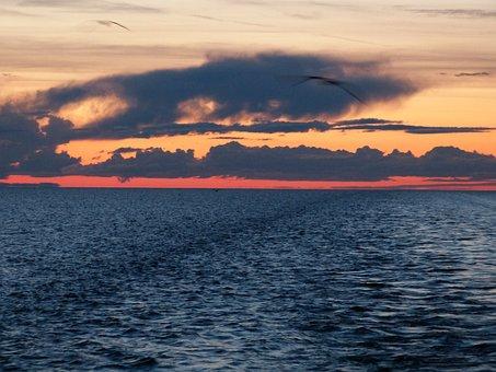 Lake Ladoga, Lake, Russia, Cruise, River Cruise, Water