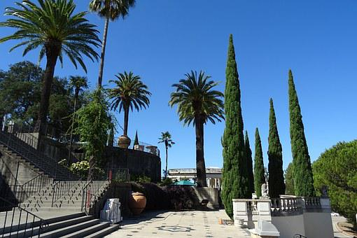 Hearst Castle, Castle, San Simeon, Architecture, Palm