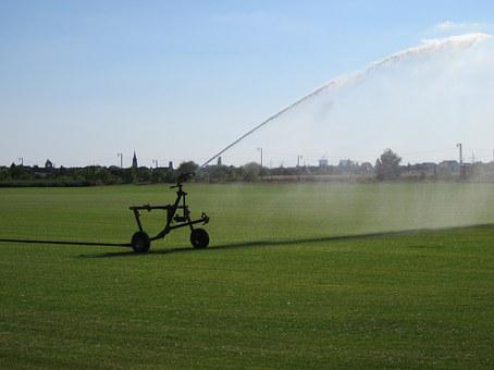 Reilingen, Sod, Farming, Irrigation, Green, Sprinkler