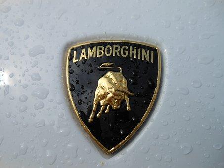 Lamborghini, White, Emblem, Logo, Vehicle, Automotive