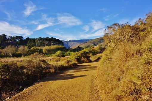 Muir Beach, California, Marin County, Landscape