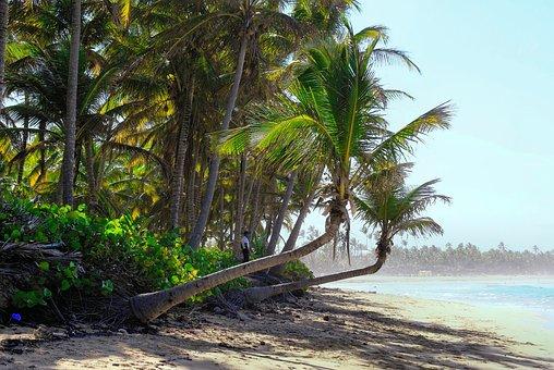 Thick Cloud, Ile, Beach, Calm, Guard, Sandy Beach