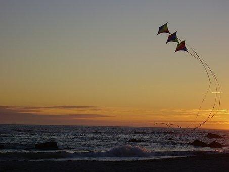 Kites, Pope-winds, Parrots, Pandorgas, Stingrays